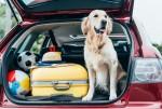 Vacanze in auto: preparare una partenza sicura