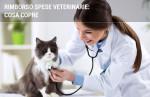 Rimborso spese veterinarie: tutto quello che c'è da sapere