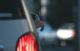Sicurezza stradale: in cosa peccano gli italiani?